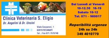 Clinica Eligio