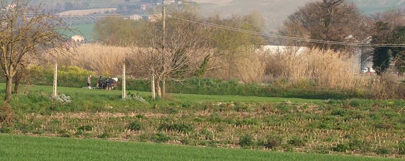 Risultati immagini per salma nelle campagne